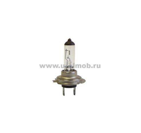 Фото: АКГ 24-70-3 Н-7 Лампа фарная галогеновая